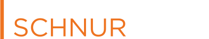 The Schnur Consulting Group